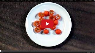 動画★プチトマトの作り方