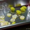 レモンを仕込み中。