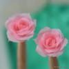 バラはバラは・・・